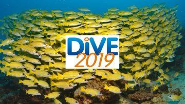 Dive Show